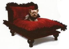 Make your dog the celebrity in your life with this luxurious dog bed.  Product in photo is from www.wellappointedhouse.com