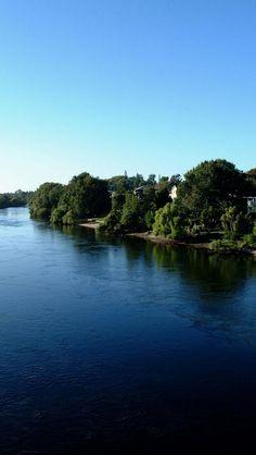 Waikato River, Waikato, North Island, New Zealand