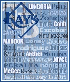 Tampa Bay Rays 2014. GO RAYS!!!