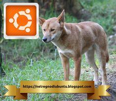 Canonical ha appena rilasciato l'ultima versione di Ubuntu nota anche come Disco Dingo. - Nel Regno di Ubuntu Kangaroo, Software, Animals, Note, Baby Bjorn, Animales, Animaux, Animal, Animais