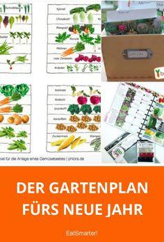 Der Gartenplan fürs neue Jahr: Was wann pflanzen?