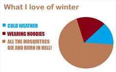 why I love winter. True. The best part of winter is no bugs
