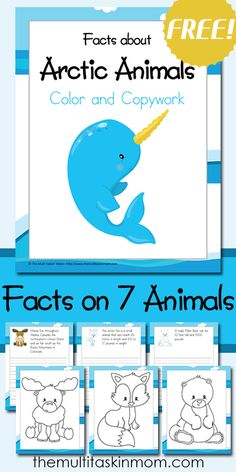 Color and Copy Work Facts about Arctic Animals includes 7 fun arctic animals to learn about animals silly animals animal mashups animal printables majestic animals animals and pets funny hilarious animal Artic Animals, Arctic Animals For Kids, Wild Animals, Winter Art Projects, Preschool Themes, Polar Animals Preschool Crafts, Preschool Kindergarten, Animal Activities, Winter Activities