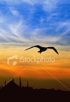 http://www.istockphoto.com/blueclue