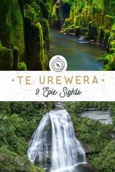 Te Urewera Rainforest Route: 9 Epic Stops! - NZ Pocket Guide New Zealand Travel Guide New Zealand Destinations, New Zealand Itinerary, New Zealand Travel Guide, Road Trip Packing List, Visit New Zealand, Travel Inspiration, Travel Ideas, Travel Tips, Travel Route