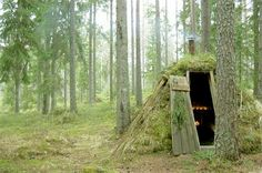 "Swedish ""Chameleon"" cabin in the woods you can rent."