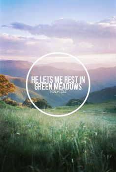 Psalm 23:2a - He makes me lie down in green pastures,
