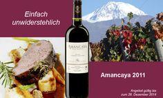 Eindrucksvoll lässt der Amancaya die meisterlichen Hände der berühmten Weindynastie erkennen. Er präsentiert sich mit einer subtilen Harmonie von argentinischem Charakter und Bordelaiser Stil. Aufgrund des hohen Malbec- Anteils erweist er sich als sehr fruchtbetonter, perfekt ausbalancierter Wein, individuell und einprägsam, geprägt von roten Früchten und der sanften Vanillenote des Holzausbaus, würzig, mit schöner Harmonie und Tanninstruktur