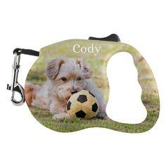 Met deze prachtige hondenriem, wordt de hond uit laten pas echt leuk!