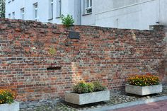 Remnant of Warsaw Ghetto wall behind a house at Sienna Street 55
