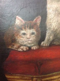 While medieval artists excelled at painting religious scenes, portraits of royalty and naked ladies, cats offered an altogether different challenge. It looks like the medieval painters never laid eyes on a cat. Medieval Paintings, Renaissance Paintings, Renaissance Art, Funny Cat Memes, Funny Cat Videos, Funny Cat Pictures, Cat Club, Funny Paintings, Cat Paintings