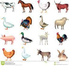 Image Result For Birds Eye View Farm Animal Clipart Animal Clipart Farm Art Animal Photo