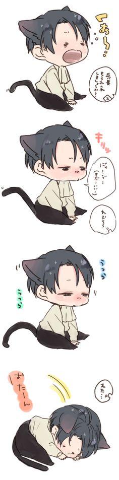 Neko Levi // AoT... *dies of cuteness ovedose*