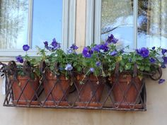 Are you looking for metal window boxes? Try on wrought iron window boxes to become planters for flowers, herbs, fruits and vegetables Wrought Iron Window Boxes, Metal Window Boxes, Wrought Iron Stairs, Window Box Flowers, Balcony Flowers, Flower Boxes, Outdoor Solar Lanterns, Window Bars, Iron Windows