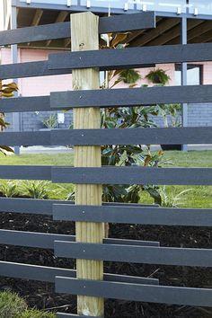 TAS Garden Transformation: Front Yard