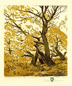Cottonwoods by Gustave Baumann