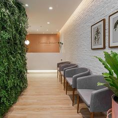 Medical Office Interior, Dental Office Decor, Medical Office Design, Pharmacy Design, Healthcare Design, Clinic Interior Design, Clinic Design, Design Offices, Modern Offices