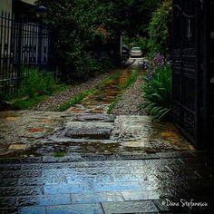 - photo by Dana Stefanescu Bucharest Romania, Railroad Tracks, Sidewalk, Paris, Country, Beautiful, Montmartre Paris, Rural Area, Side Walkway