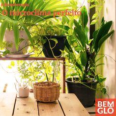 Vem saber mais sobre como você pode mudar o clima em sua casa e seus arredores. Confira mais uma dica tudo de Bemglô no site da Gloria Pires.