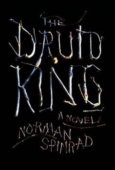 "Stephen Doyle: ""The Druid King"" book jacket. 2003 Knopf"