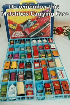 Remember when Hot Wheels were carried & kept in a Hot Wheels case? My brother had  several