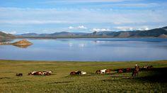 La Mongolie est le pays le moins peuplé au monde. C'est un espace de culture et de paysages.