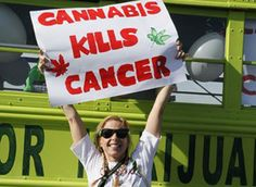 It took the death of her pot-growing uncle to light a fire under Stacey Theis. Now she rolls down the highway in the Cannabus, doing her part to end marijuana prohibition.