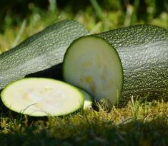 Cukina je mimoriadne vďačným produktom našich záhrad. Rastie mimoriadne rýchlo, je nenáročná no a v obchodoch ju...