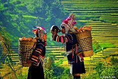 Myanmar (Burma) is an incredibly beautiful country and until now almost undiscovered by tourists. Explore the of the most beautiful places to visit in Myanmar Hpa An, Laos, Lac Inle, Myanmar Travel, Northern Thailand, World Photography, Travel Photography, Thinking Day, Beautiful Places To Visit