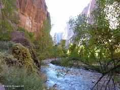 This is a photo I took in Mt. Zion National Park, National Parks, Amazing Places, The Good Place, Globe, Water, Outdoor, Gripe Water, Outdoors