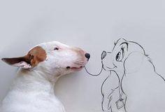 Se você tinha dúvidas que criatividade é como a zoeira (não tem limites), o publicitário Rafael Mantesso faz jus à afirmação. Munido de uma câmera fotográfica, uma caneta e um Bull Terrier o brasileiro está fazendo sucessocomseu perfil no Instagram. O protagonista da história é seu cachorro, que serve de modelopara as criativas fotografias. Confira …