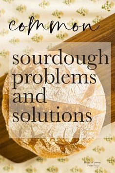 Sourdough FAQs and Troubleshooting Is your sourdough bread not turning out like you hoped it would? If your bread is dense, gummy, flat, or weird-looking, see if these common solutions can help. Sourdough Bread Machine, Sourdough Rolls, Sourdough Bread Starter, Sourdough Recipes, Bread Rolls, Sourdough Bread Healthy, Sourdough Pancakes, Artisan Bread Recipes, Monkey Bread