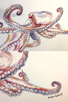 giant octopus wallpainting…