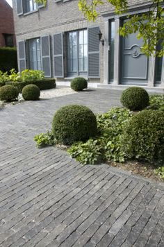 backyard design – Gardening Tips Driveway Paving, Concrete Driveways, Front Yard Decor, Front Yard Landscaping, Small City Garden, Pavement Design, Front Doors With Windows, Front Gardens, Outdoor Flooring