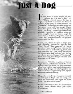 """I may have cried when I read this. A lot of people have said """"they are just dogs"""" to me before. No, they are not. They are part of my family and to me Abby and Tex have never and will never be """"just a dog"""" to me or Josh. There is no price tag on the love and companionship of a dog. And if you think there is, just remember, you are your dog's everything."""
