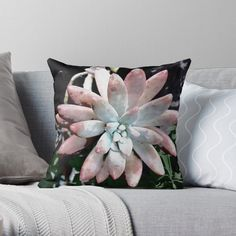 'Succulent Beauty' Throw Pillow by Adele Buys Framed Prints, Canvas Prints, Art Prints, Get Free Stuff, Stuff To Buy, Buy Succulents, Beauty P, Designer Throw Pillows, Pillow Design