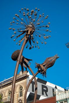 Giant Weeds Sculpture  [dandelion, Taraxacum officinale, Asteraceae]