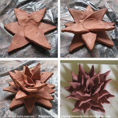 terracotta succulent process