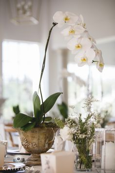 Our lovely planter used at Celeste's wedding at White Light White Light, Silk Flowers, Backdrops, Planters, Wedding Ideas, Table Decorations, Pretty, Home Decor, Decoration Home