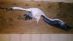 oiseau de mer, Fou de Bassan, sur planche bois flotté : Décorations murales par valheureuse