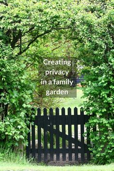 Trying to create privacy in a family garden? Check out these ideas to help you relax and enjoy your outdoor space without being overlooked.