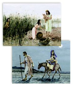 The artwork in these BEAUTIFUL and Biblically accurate.  There are 105 8 1/2 X 11 HEAVY Laminated Chronological Color Pictures and is a wonderful addition to the 3rd-4th Firm Foundations Bible curriculum that help these great lessons come alive!