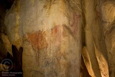 Gallery C of La Pasiega cave in Monte Castillo.