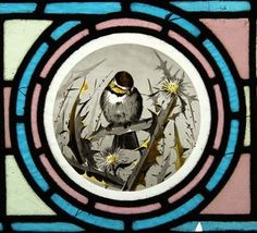 Coal tit (?) in brambles.  Victorian stained glass roundel via Long May She Rain