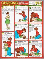 8 Best Images of First Aid Choking Poster Printable - Printable First Aid Choking Sign, Printable First Aid Choking and First Aid for Choking Infant and Child Toddler Cpr, Choking First Aid, First Aid Poster, First Aid For Kids, Health Chart, Safety Posters, American Heart Association, Kids Health, Children Health