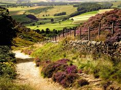 Photos of England - The beautiful countryside