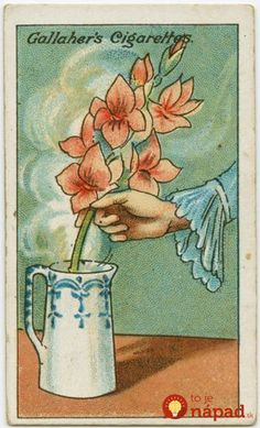 An amazing collection of vintage life hacks from 100 years ago that are surprisingly, still useful today! Large Candles, Cut Flowers, Fresh Flowers, Minion, Helpful Hints, Handy Tips, Life Hacks, Life Tips, The Past
