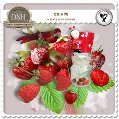 CU 70 by Black Lady Designs : DSH: Digital Scrapbooking Hill - high quality CU and PU elements, exclusive products, kits, freebies and more...