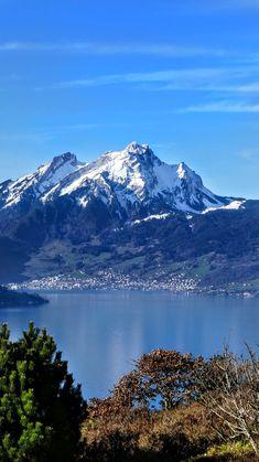 Ausblick aus Weggis Luzern mit Vierwaldstättersee Schweiz Alps, Switzerland, Mountains, Nature, Travel, Scenery, Lucerne, To Draw, Nice Asses