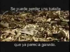 Los Marcianitos EL MEJOR VIDEO DE SUPERACION PERSONAL.